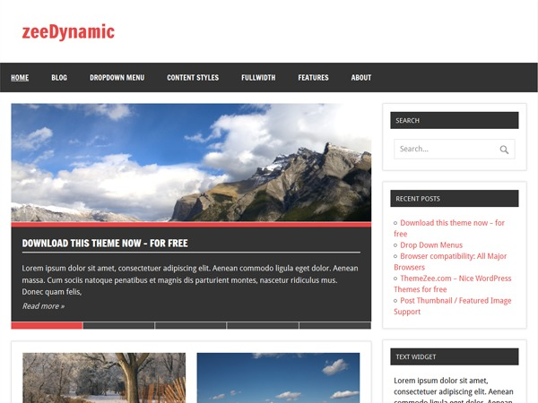 zeeDynamic WordPress template free download