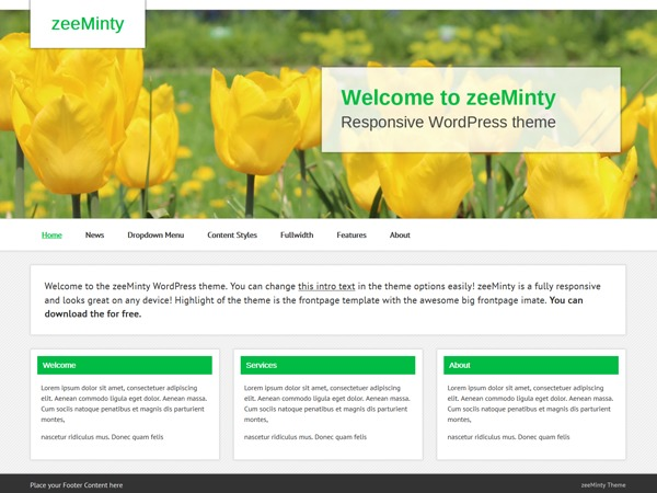 zeeMinty business WordPress theme