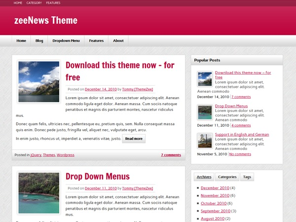 zeeNews best WordPress magazine theme
