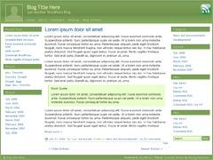 Emerald Stretch best WordPress theme