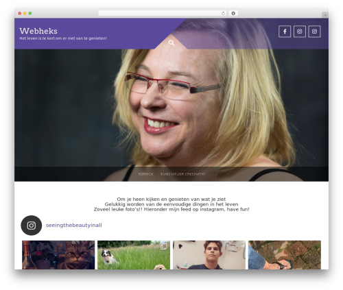 Plum free WordPress theme - webheks.nl