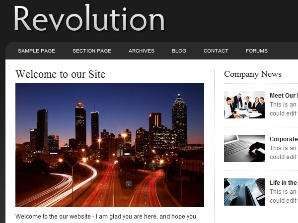 Revolution Pro Business WordPress template for business