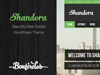 Shandora Child WordPress theme design