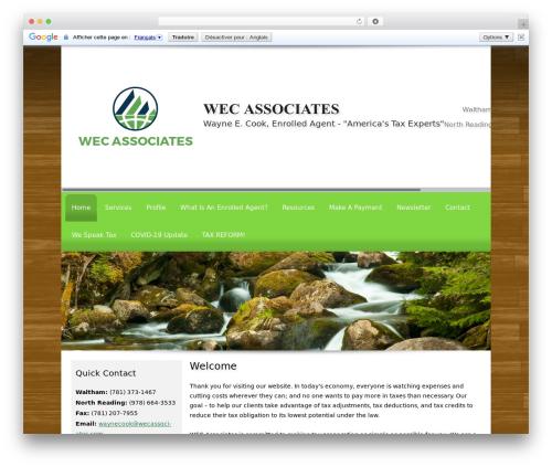 Theme WordPress Customized - wecassociates.com