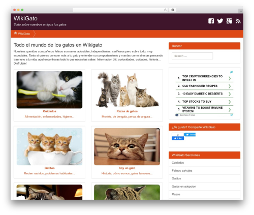 Ultimate SiloStorm Pro WordPress blog template - wikigato.com