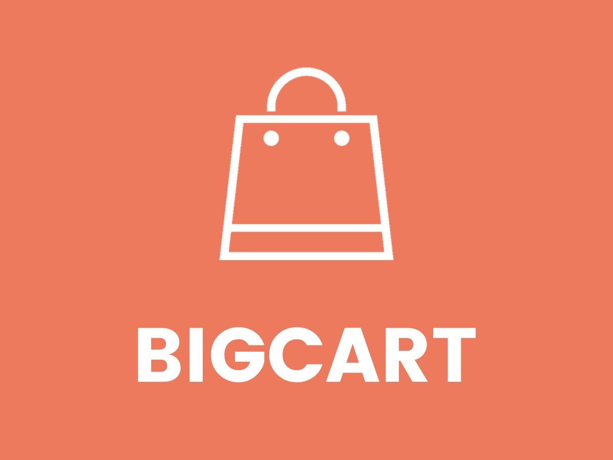 BigCart WordPress shopping theme