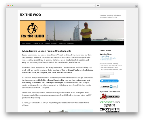 Twenty Ten top WordPress theme - rxthewod.com