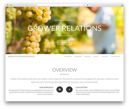 Floyd business WordPress theme - rubinviti.com