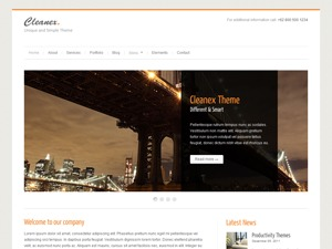 Cleanex theme WordPress portfolio