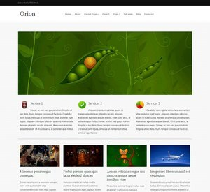 Orion WP template