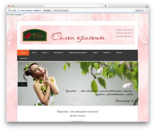 WordPress website template Pytheas - red-rose.by