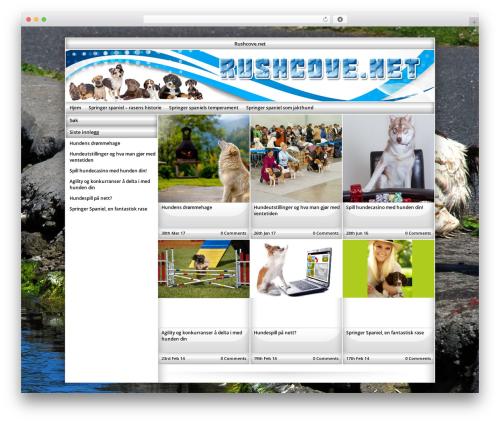 Exact WordPress theme - rushcove.net