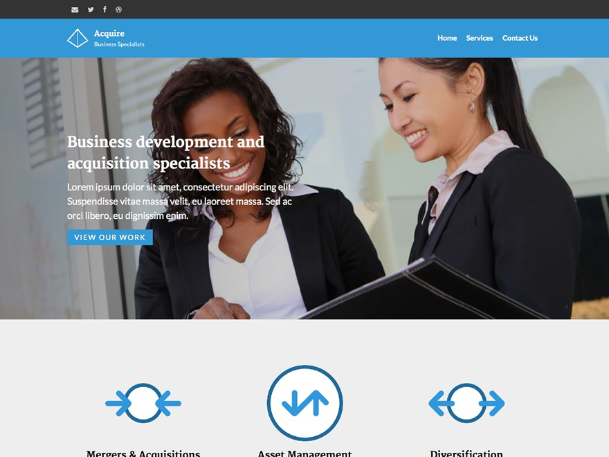 Acquire WordPress template for business