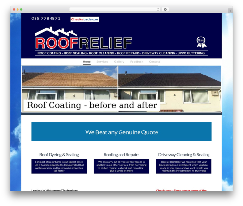 Best WordPress template X - roof-relief.com