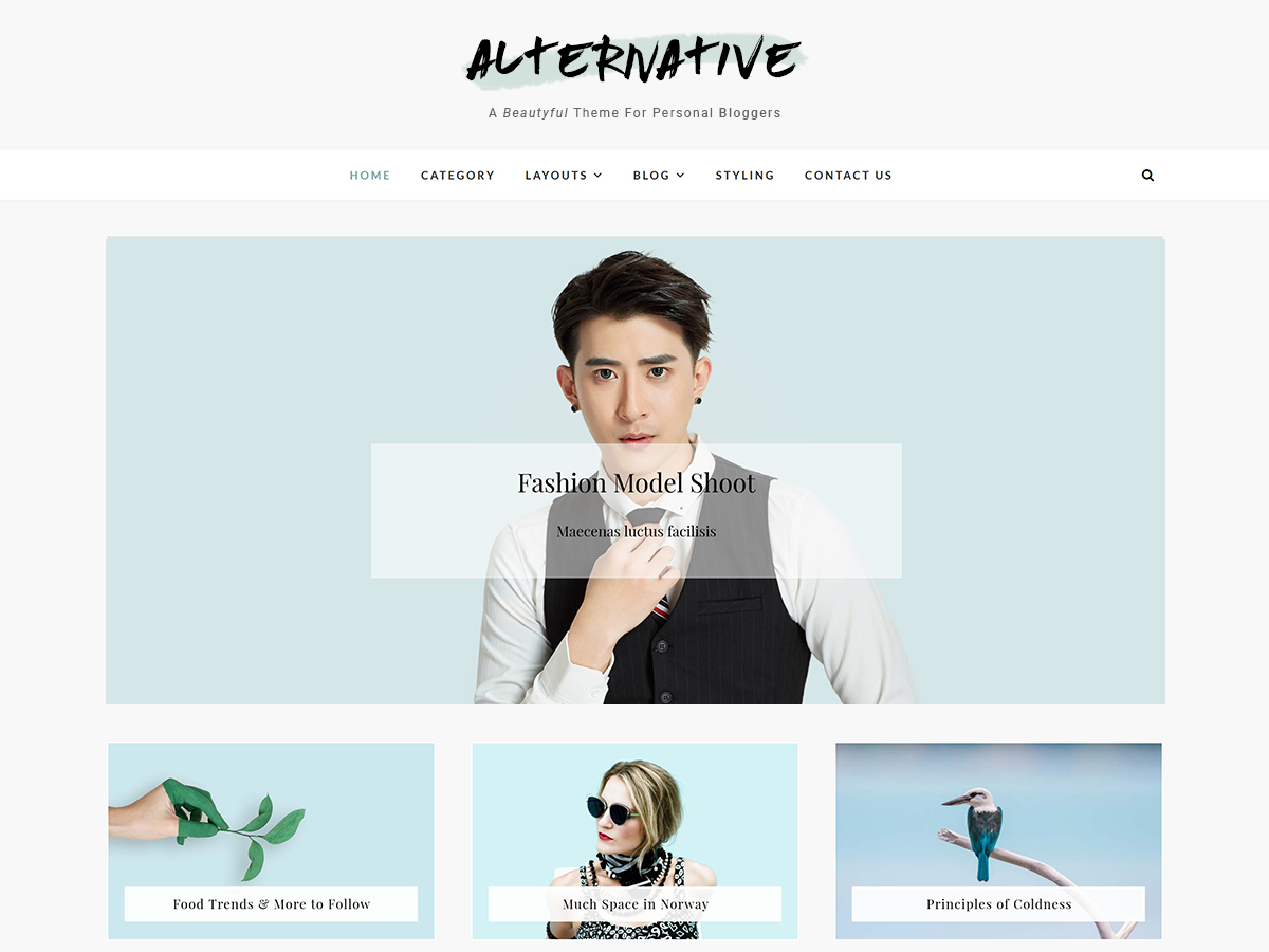 WordPress template AlterNative