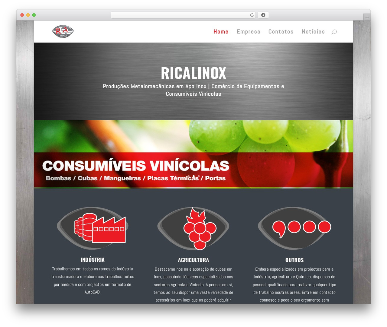 WordPress theme Divi - ricalinox.com