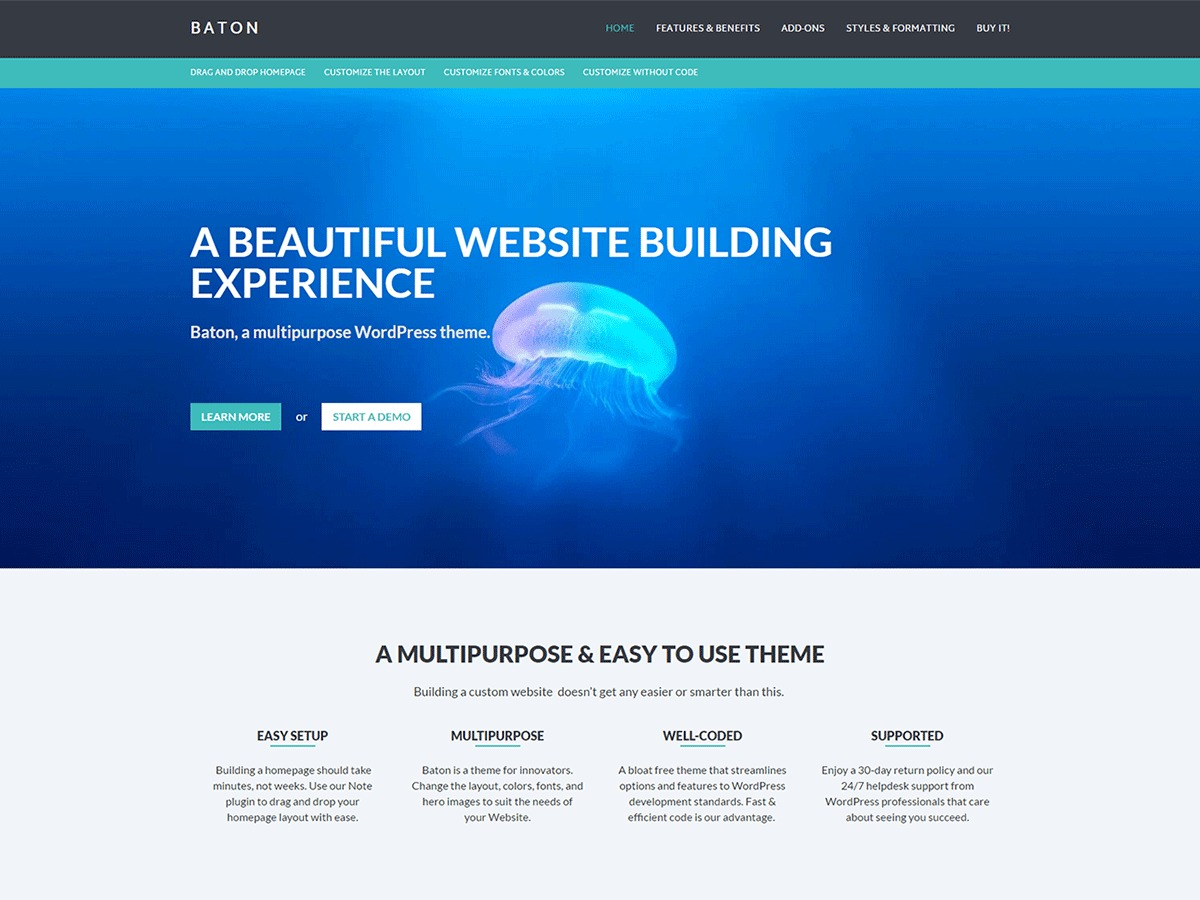 Baton WordPress template free download