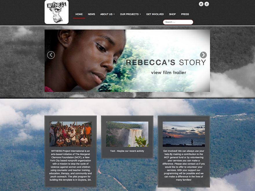 Best WordPress theme Parallax WITNESS