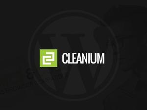 Cleanium best WordPress theme