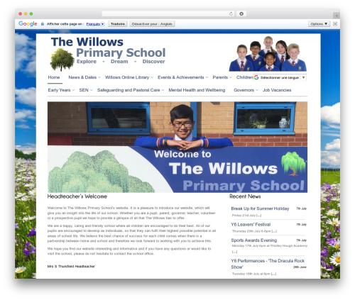 Cloriato Lite free WordPress theme - willowsprimary.com