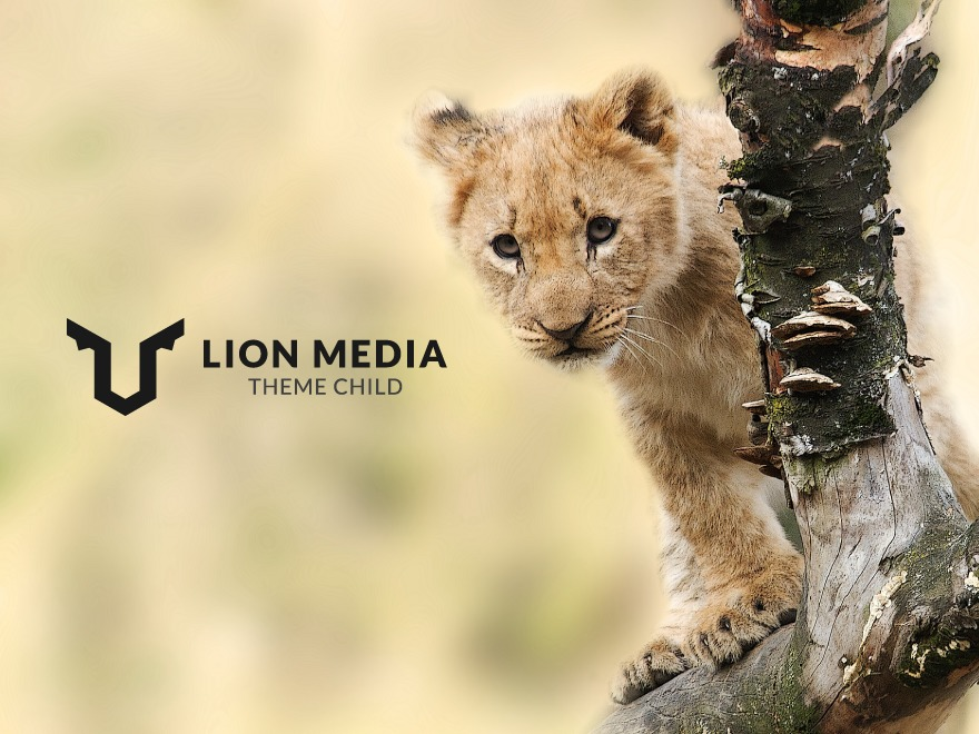 LION MEDIA Child WordPress theme design