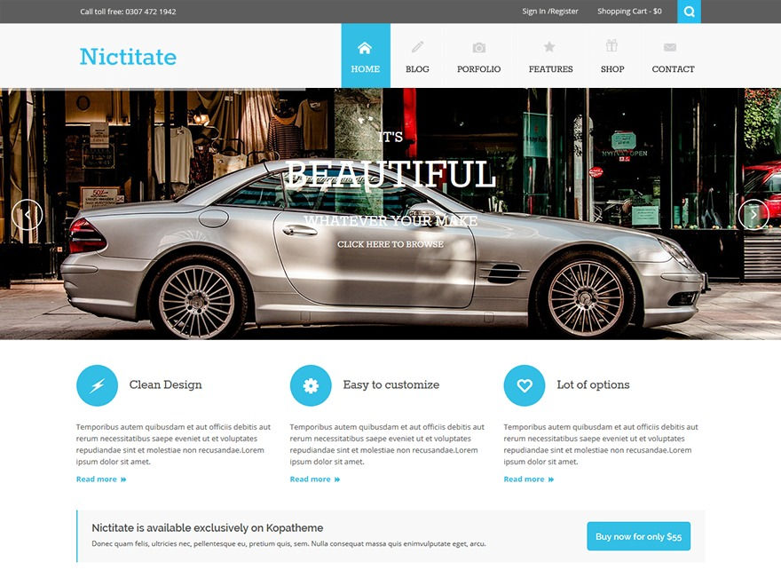 Nictitate Lite WordPress template free