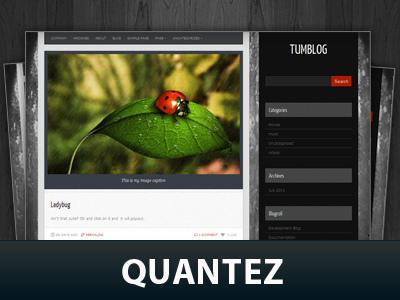 Quantez top WordPress theme