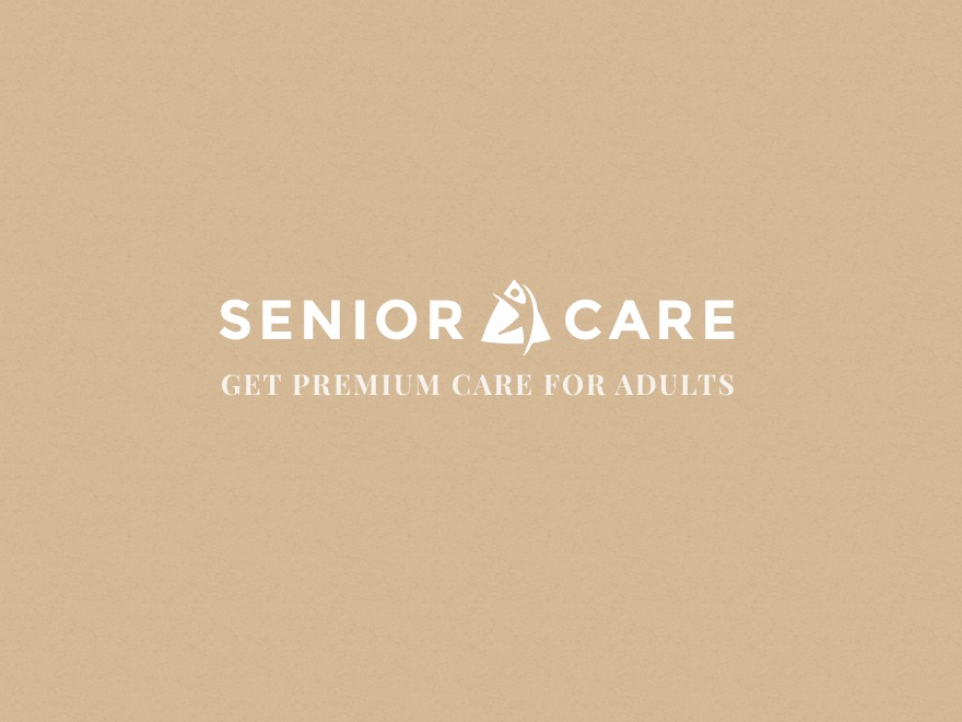 Senior 1.1.2 WordPress page template