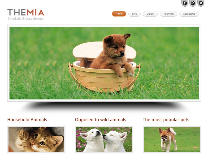 Themia Pro Responsive Theme WordPress theme image