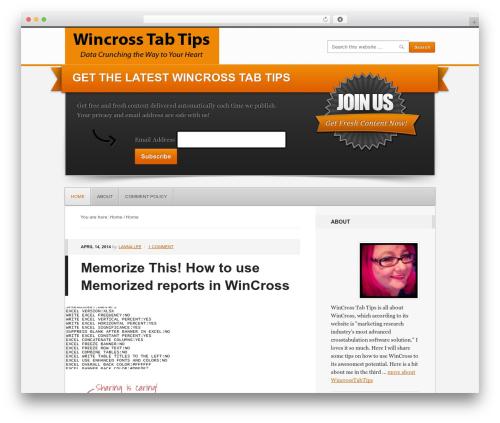 WordPress template Generate Child Theme - wincrosstabtips.com