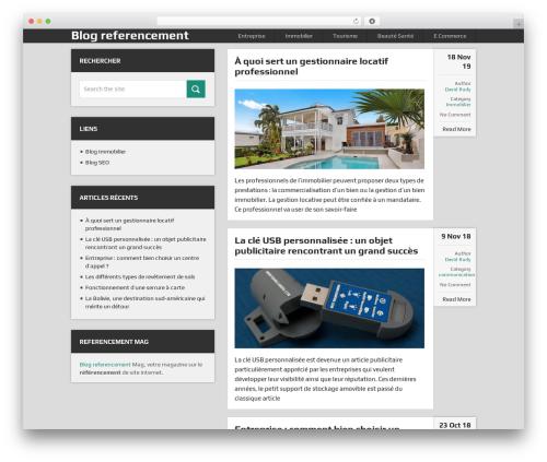 DualShock by MyThemeShop WordPress ecommerce theme - referencement-mag.fr