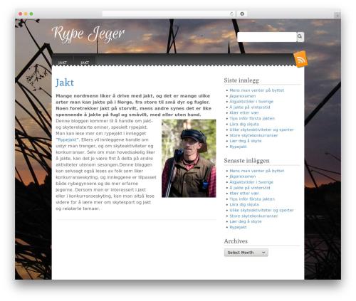 Snowblind premium WordPress theme - rypejeger.net