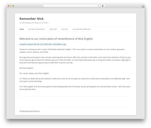 Twenty Twelve best WordPress theme - remembernick.com