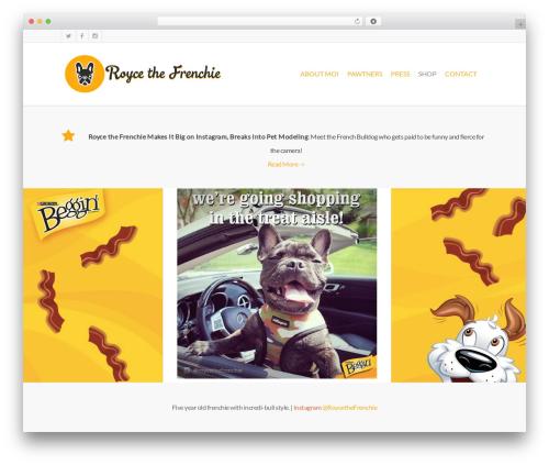 Salient premium WordPress theme - roycethefrenchie.com