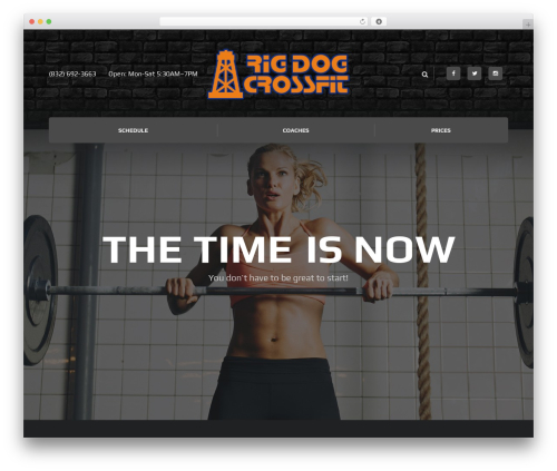 WordPress theme Ironfit - rigdogcrossfit.com