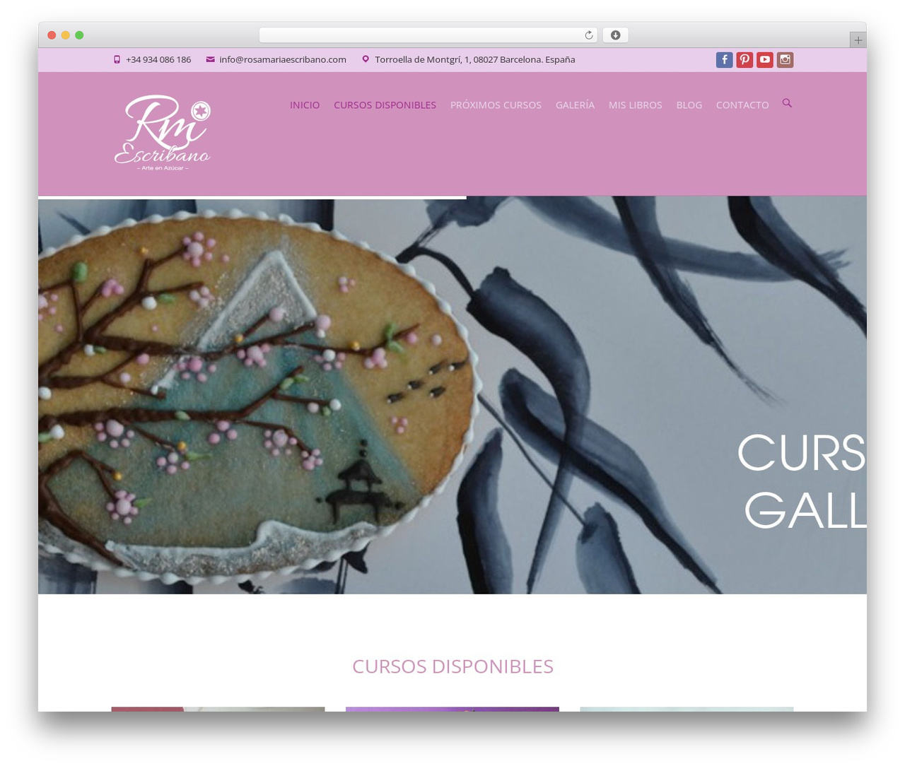 Theme WordPress Interface Pro - rosamariaescribano.com