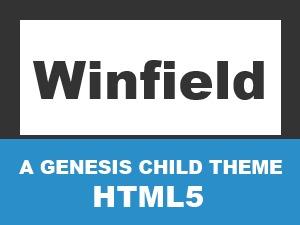 Winfield Theme best WordPress theme