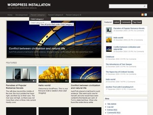 Arras Theme WordPress news theme