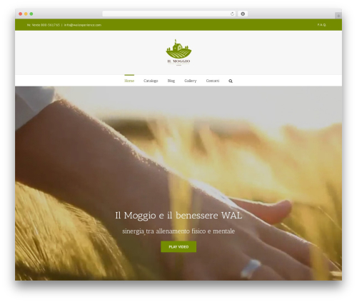 Free WordPress MailChimp for WordPress plugin - walexperience.com