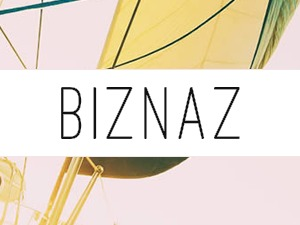 Biznaz WordPress theme