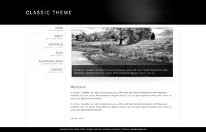 classic-theme best WordPress template