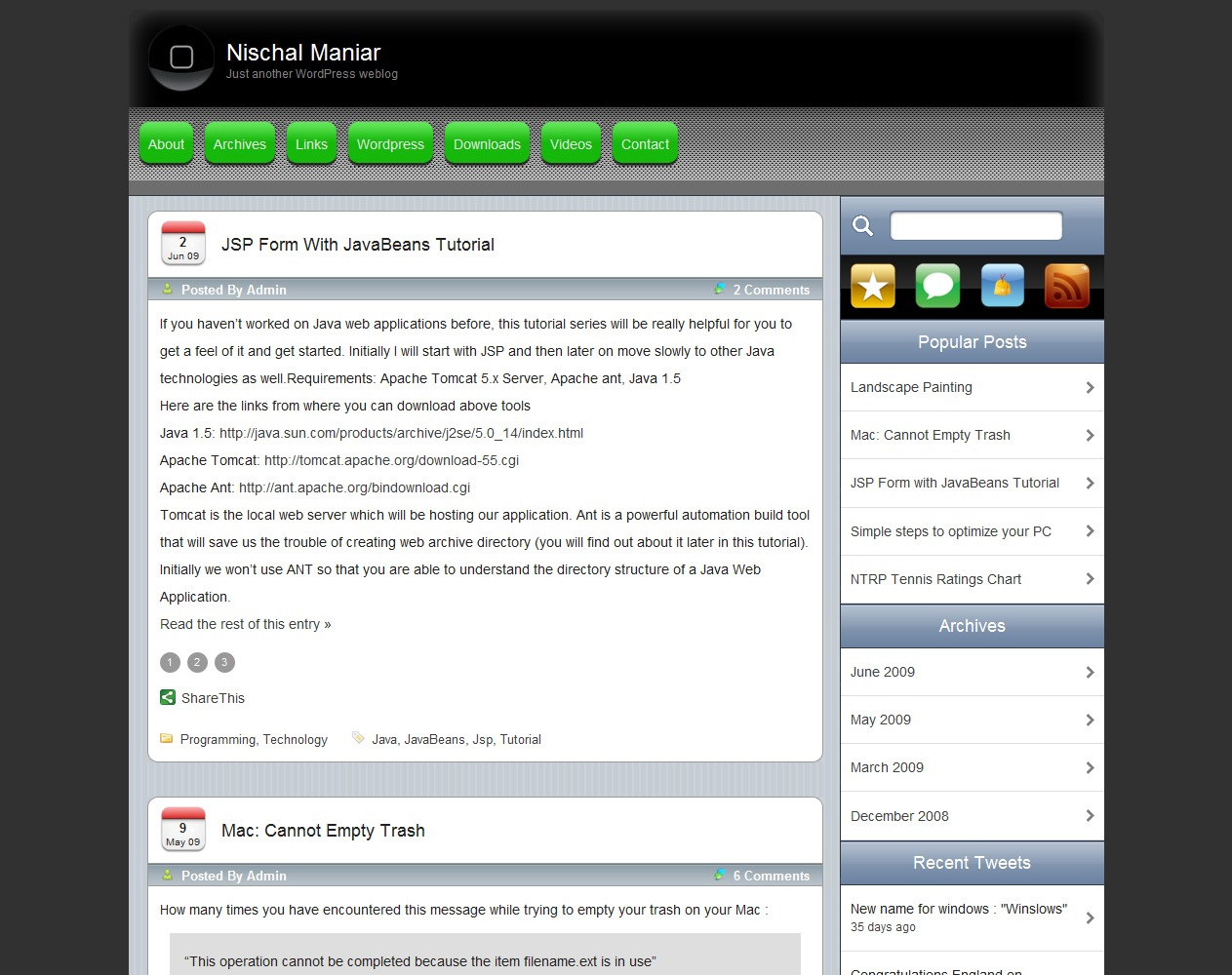 iPhoneLike WP template