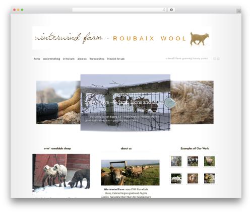 Theme WordPress Modest - winterwindfarm.com