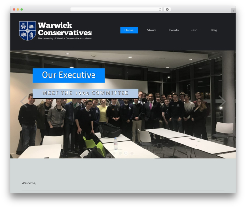 WordPress template ThemeAlley.Business.Proo - warwickconservatives.co.uk