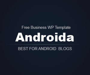 WordPress theme androida