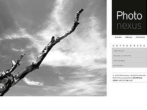 WordPress theme Photo Nexus for Wordpress
