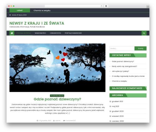 Eggnews best WordPress magazine theme - rynko.pl