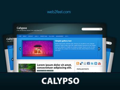 Theme WordPress Calypso