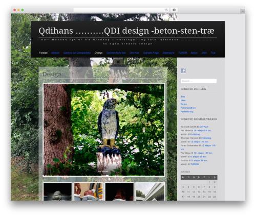 Claydell Media best WordPress template - qdihans.dk