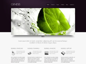 Genesis Purple WP theme